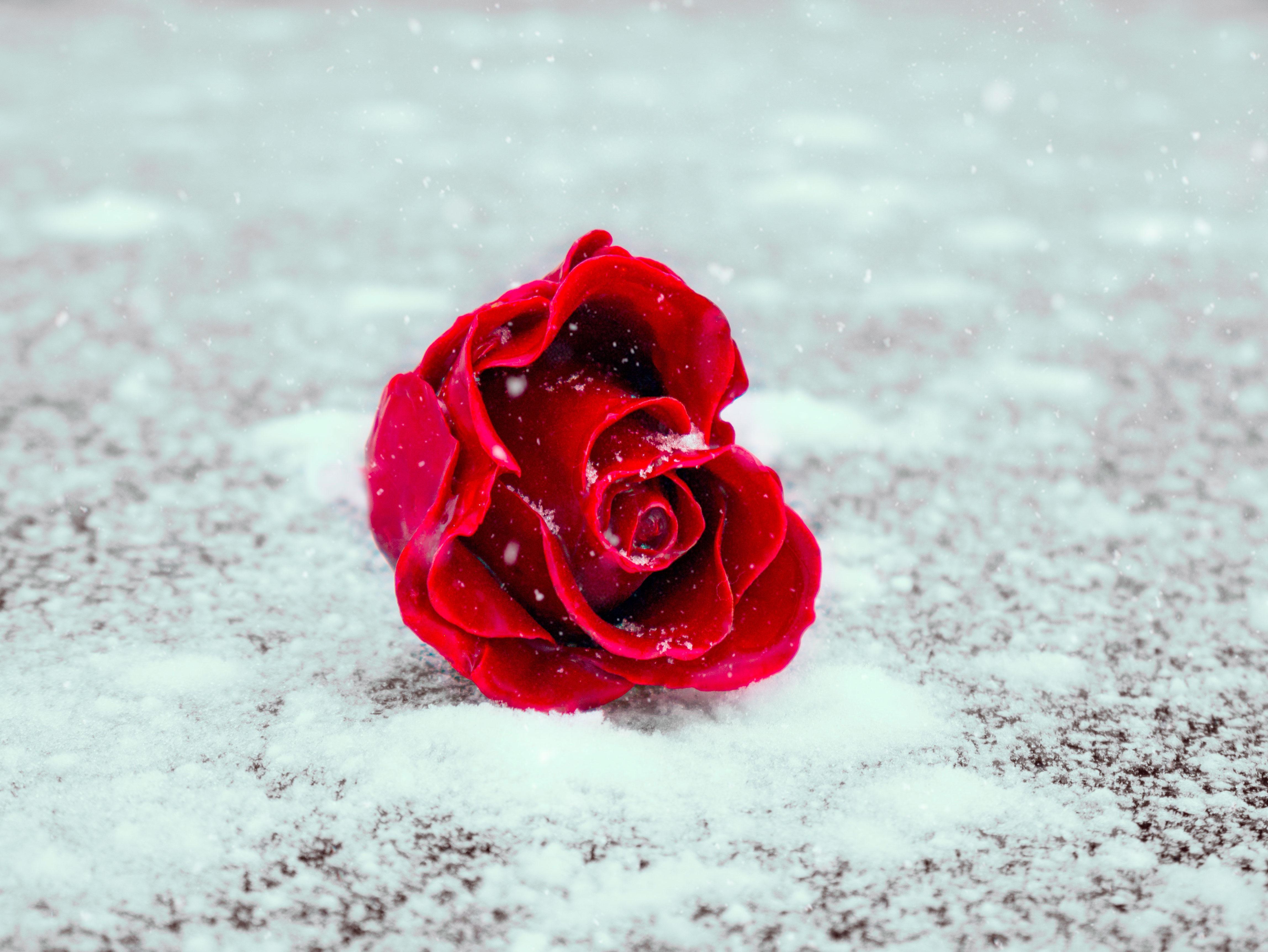 Abhangigkeit In Beziehungen Warum Emotionale Verstrickungen Echte